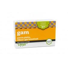 Gam - Favorisce l'eliminazione del gonfiore, pancia piatta