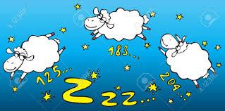 conta pecore